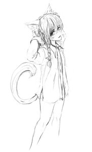 Rating: Safe Score: 0 Tags: 1girl bare_legs braid cat_ears long_hair monochrome shirt sketch tail User: (automatic)Anonymous