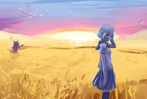 Rating: Safe Score: 0 Tags: 2girls blue_hair character_request cirno dawn field glowing_eyes multiple_girls outdoors red_eyes silver_hair skirt sky tagme thighhighs touhou User: (automatic)Anonymous