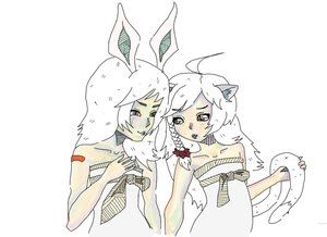 Rating: Safe Score: 0 Tags: 2girls ahoge animal_ears bare_shoulders braid bunny_ears cat_ears character_request long_hair tagme tail User: (automatic)Anonymous