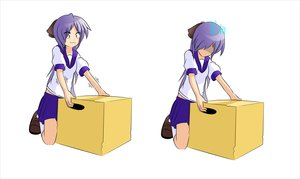 Rating: Safe Score: 0 Tags: 1girl box collage darkening faceless hiiragi_kagami kneeling kneesocks long_hair /ls/ lucky_star purple_eyes purple_hair school_uniform serafuku simple_background skirt solo User: (automatic)Anonymous